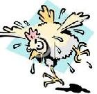 Игра «Мокрая курица»