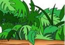 Праздник в джунглях