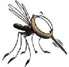 dariki_komariki